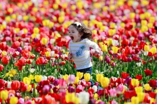Дети и тюльпаны