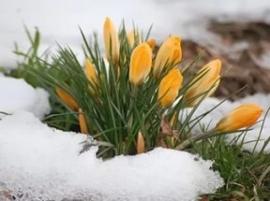 """Игра """"Признаки весны"""" или """"Встреча с Весной"""""""