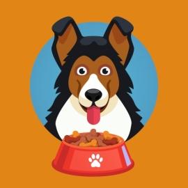 Кто что ест: домашние животные