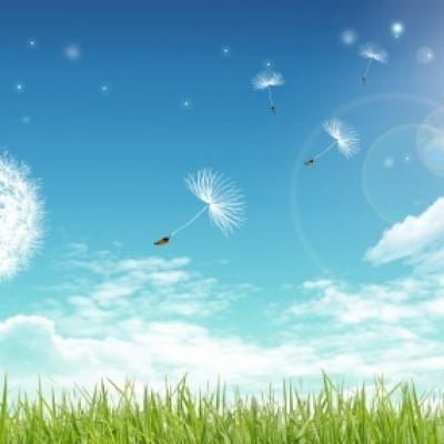 Игра «Доскажи словечко» про лето
